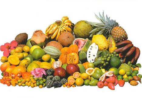 Cibo alimentazione e ricette colombia america for Elenco alberi da frutto